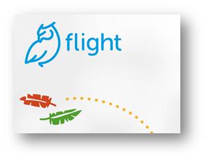 Website Link to FLIGHT
