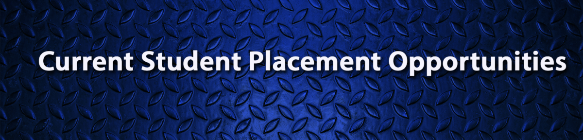 23652-Placement-banner-wecompress.com-1-1200x288.png