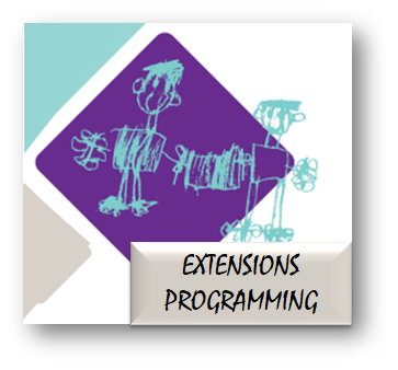 Extensions Programming.png