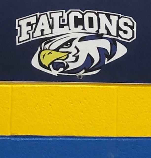 Falcons Close Up.jpg